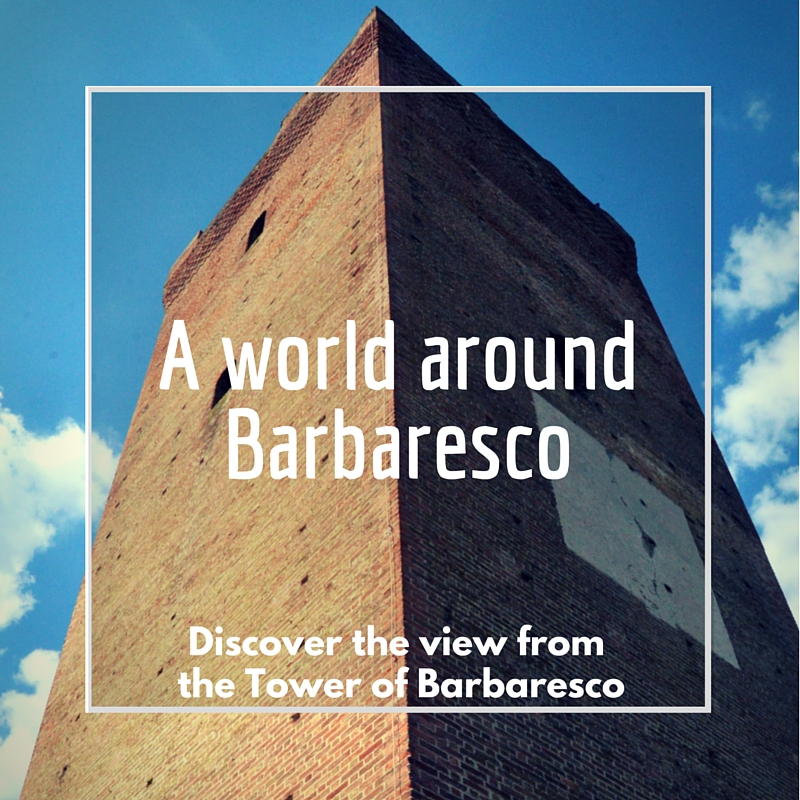 A WORLD AROUND BARBARESCO